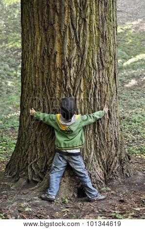 Boy & tree