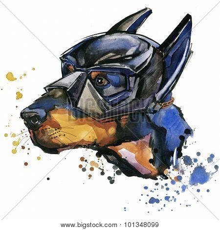 Doberman dog Super man T-shirt graphics. Doberman dog illustration with splash watercolor textured