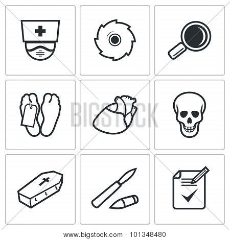 Pathologist And Morgue Icons Set. Vector Illustration