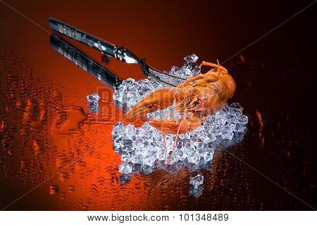 Fork, Ice And Crawfish