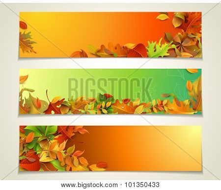 Vector Set Of Bright Horizontal Fall Banners.
