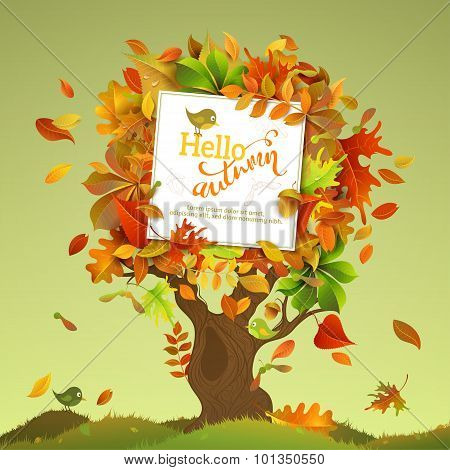 Autumn Tree Illustration.