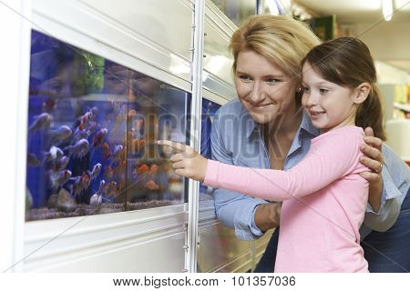 Mother And Daughter Choosing Goldfish In Pet Store