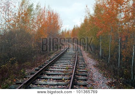 Railway Receding Into The Distance - Industrial Autumn Landscape
