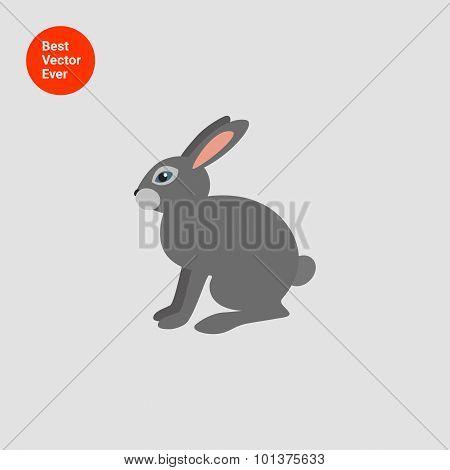 Grey hare icon