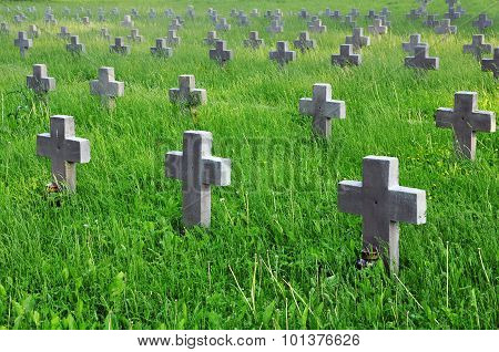 Many gray crosses on a cemetery