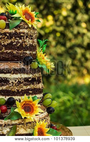 Cake Open Shortcakes  With Sunflowers Sugar