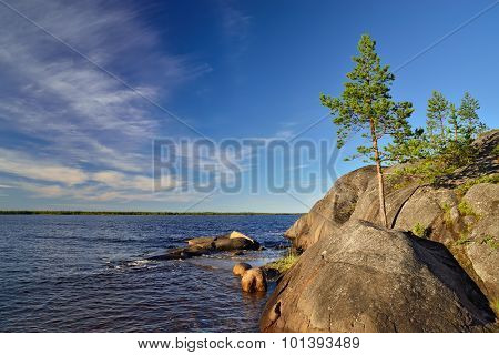 Karelian Landscape: Rocks And Pines. Russia
