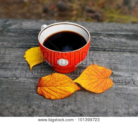 Cup Of Coffee In The Fall