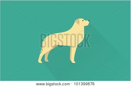 labrador retriever vector illustration