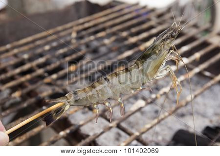 Close Up Raw Shrimps Impale With Wood