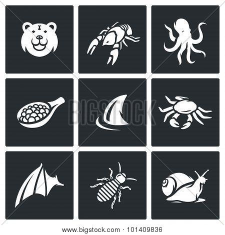 Delicatessen Food Icons Set. Vector Illustration.
