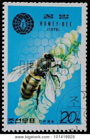 North Korea - Circa 1979: A Stamp Printed In North Korea Shows The Bee And Flower  From The Series