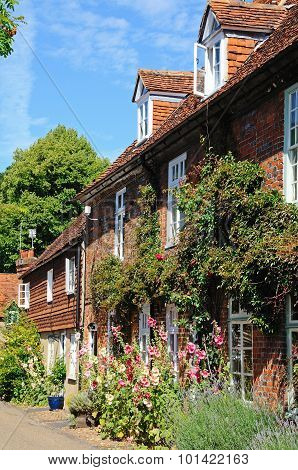 Row of cottages, Hambledon.