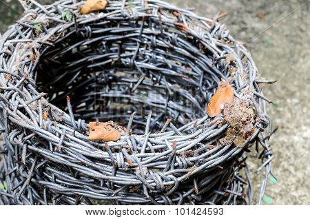 Barbed Wire Coils