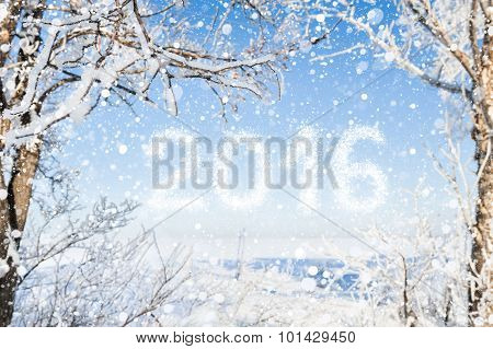 Inscription Of The New Year 2016 With Winter Forest Background
