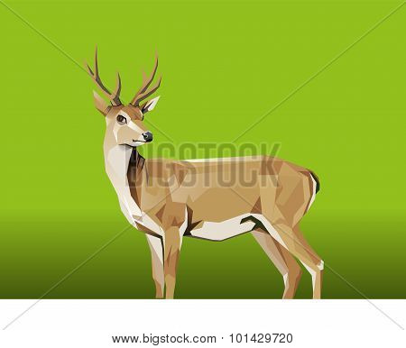 Deer with green Background