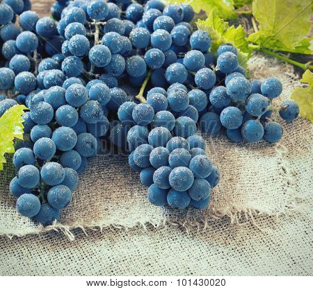 Cluster Of Blue Grapes On Old Wooden Background Toned Image