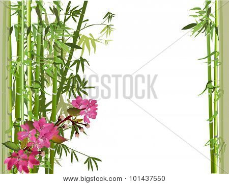 illustration with pink spring flowers and green bamboo