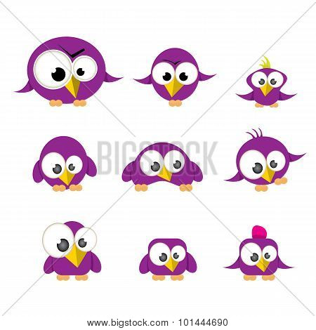 cute birds collection