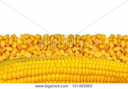 Yellow Corn Grain Isolated On White Background