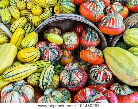 Delicata And Turban Squashes At The Market