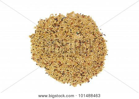 Food for birds isolated on a white background