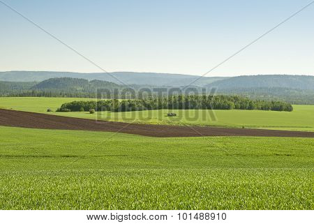 Alpine Farmland