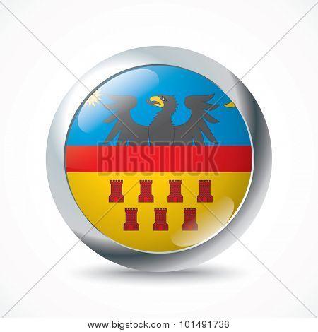 Transylvania flag button - vector illustration