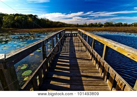 Wooden Fishing Pier