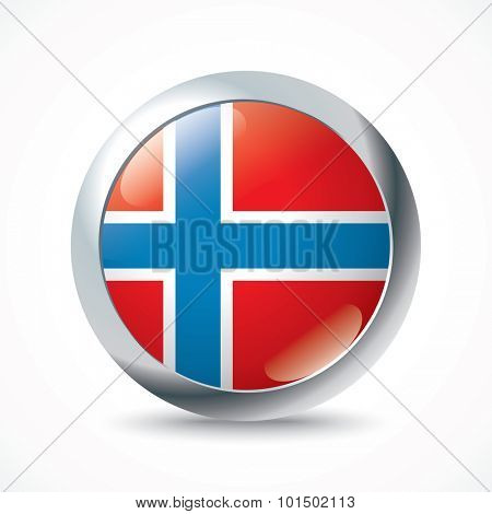 Bouvet Island flag button - vector illustration