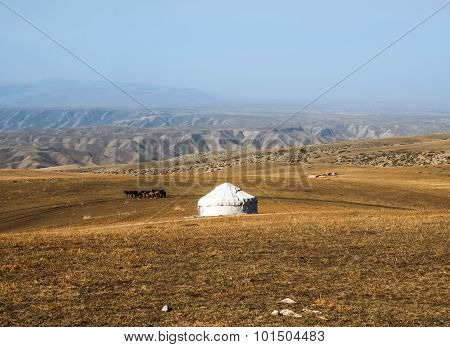 The grasslands of Mongolia.