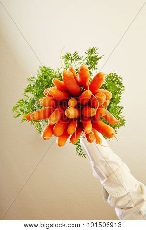 Bunch of fresh carrots from below as symbol for veganism