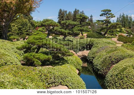 Beautiful japanese green park in summer time