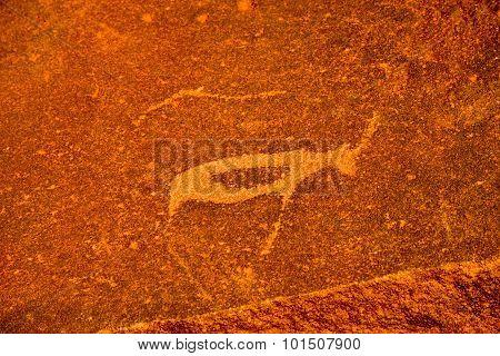 Bushman Rock Engravings - Namibia