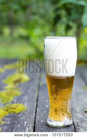 Glass of beer on the old forest table