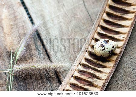 Fresh Organic Quail Egg On Wooden Background