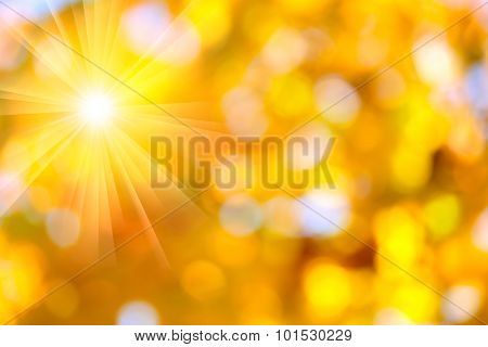 Autumn abstract, fall season colors background with a magic sun lights, out of focus