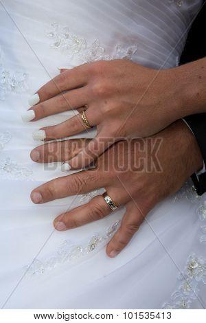 Wedding Hands Of Newly Wedding Couple
