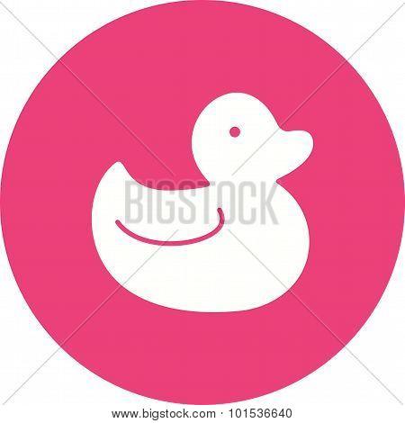 Duck , Water