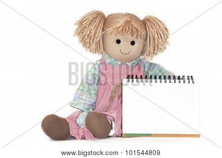 Rag-doll, Blank Paper Sheet In Cage, On White Background