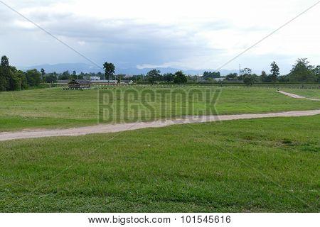 Road In The Farmland