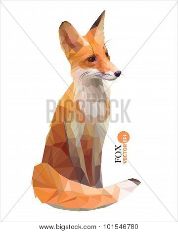 vector red Fox in polygonal style