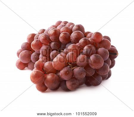 Branch of the dark grape isolated
