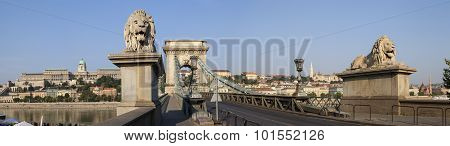 Chain Bridge In Budapest Panorama