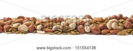 Line made of nuts and seeds isolated
