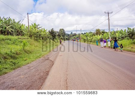 Countryside Road In Tanzania