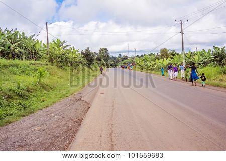 Countryside Road In Tanzania