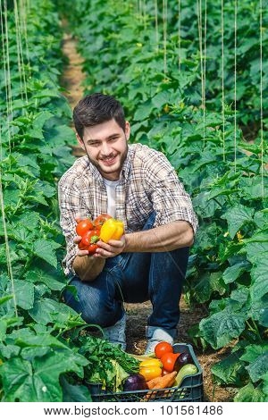 Agronomist holding vegetables, looking in camera
