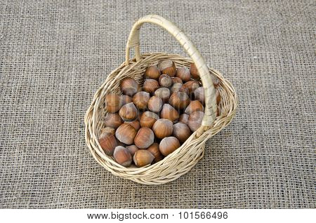 Hazel Nuts In Wicket Basket On Linen